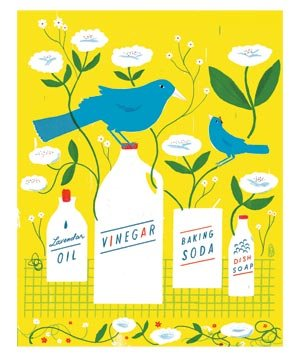 illo-birds-flowers-cleaning-products