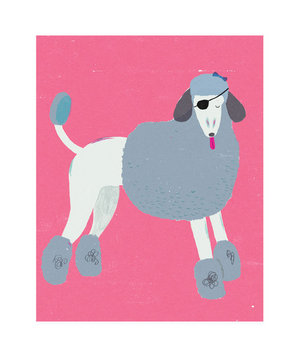 illo-poodle-eye-patch