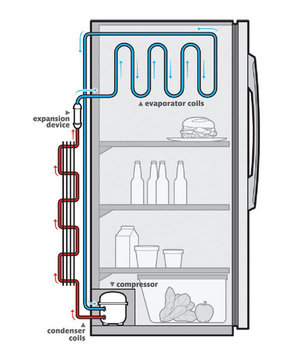 Illustration of how a fridge works
