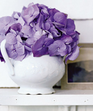 sugar-bowl-used-as-flower-vase