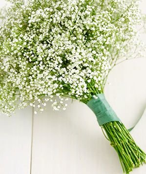 How to Transform Baby's Breath | Turn Supermarket Flowers ...
