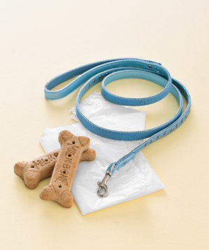 0509dog-leash-biscuits