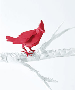 paper-construction-robin-branch