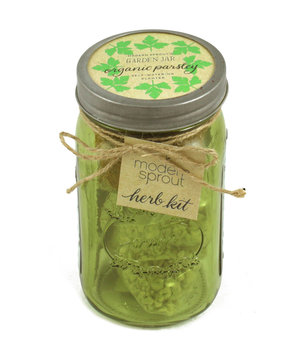 Modern Sprout Garden Jar – Organic Parsley