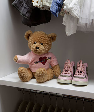 teddy-bear-shelf-closet
