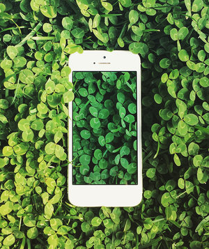smartphone-in-plant