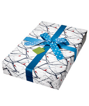 gift-bird-wrapping-paper-blue-bow