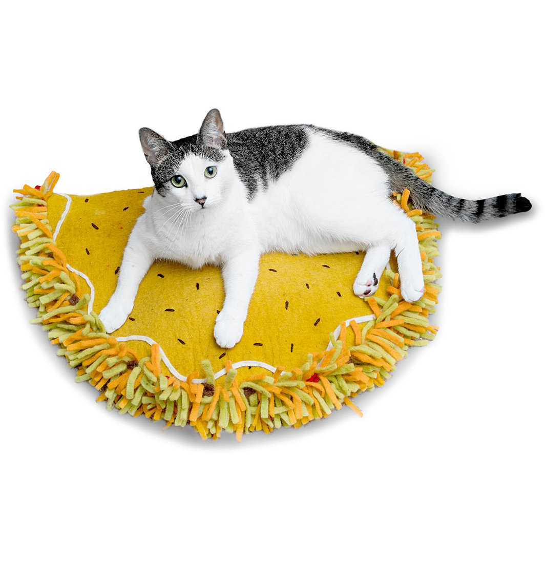 Funny White Elephant Gifts: Taco Cat Bed