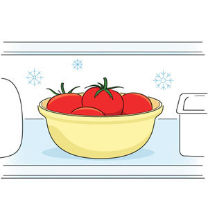 Storing Tomatoes in the Refrigerator