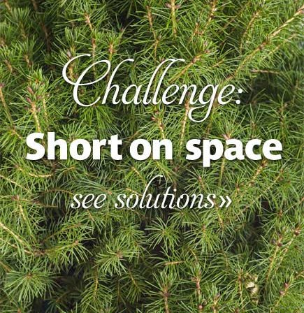 Challenge: Short on Space