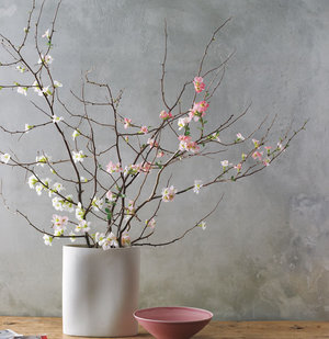 Bouquet of Branches