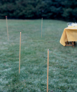 keep mosquitoes away 16 tips for an effortless outdoor party real
