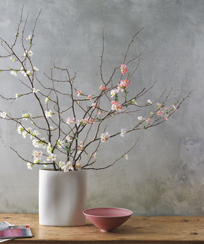 Quince bouquet in a vase