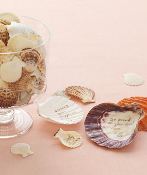 Seashells as guest book
