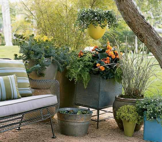 Use Plants For Backyard Privacy