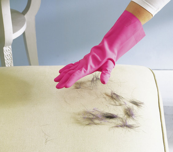 rubber-glove-used-to-remove-pet-hair