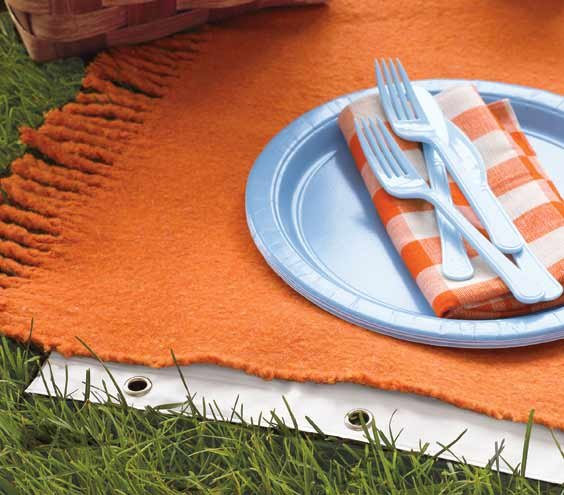 shower-curtain-liner-used-under-picnic-blanket