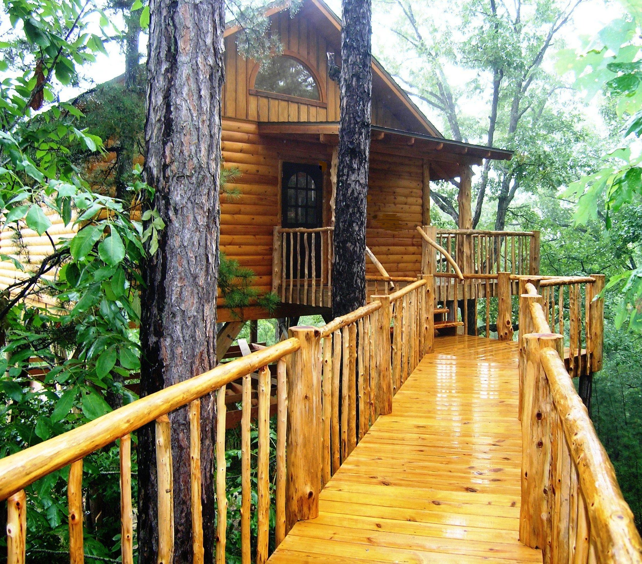 Search Houses: 7 Tree Houses You Can Sleep In