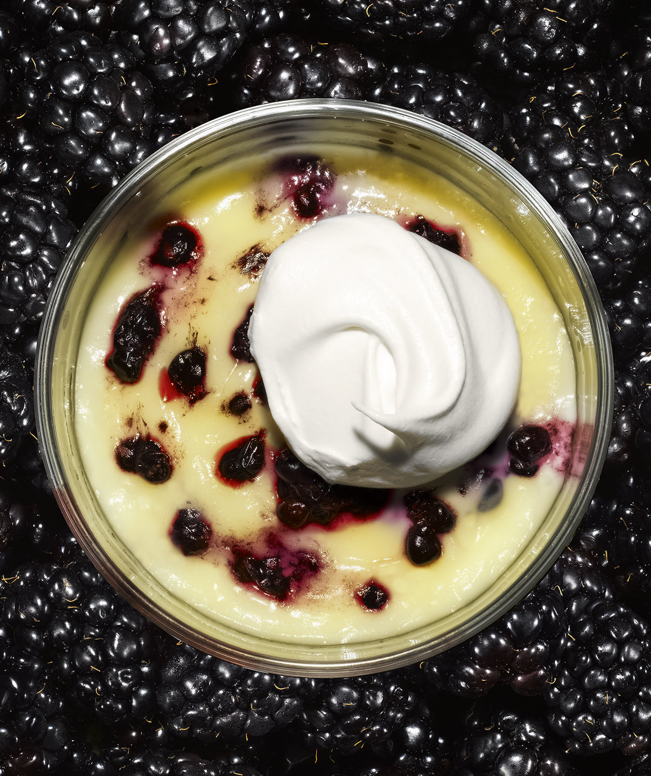 blackberry-budino