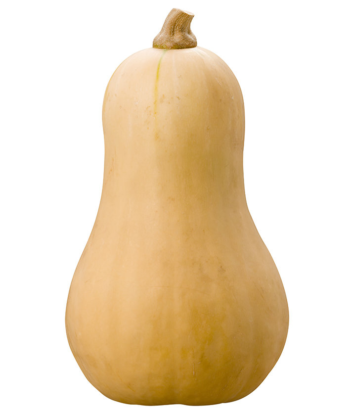 butternut-squash-on-white