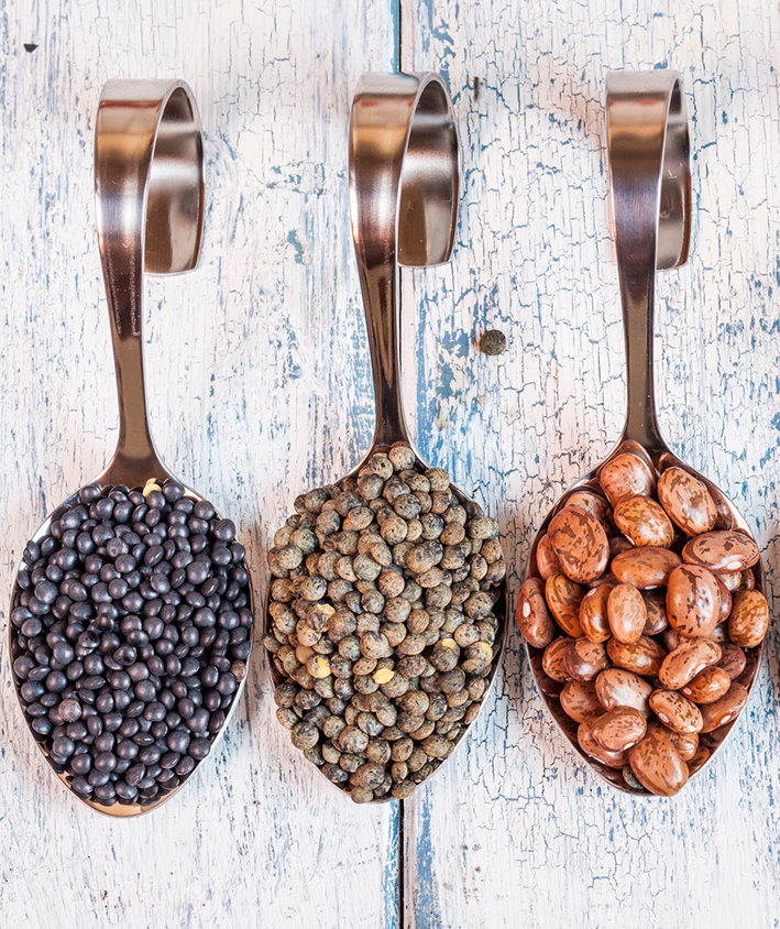 plant-protein-seeds