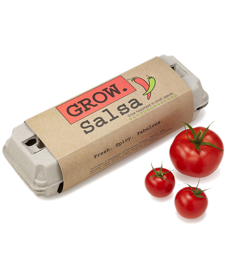 salsa-grow-kit