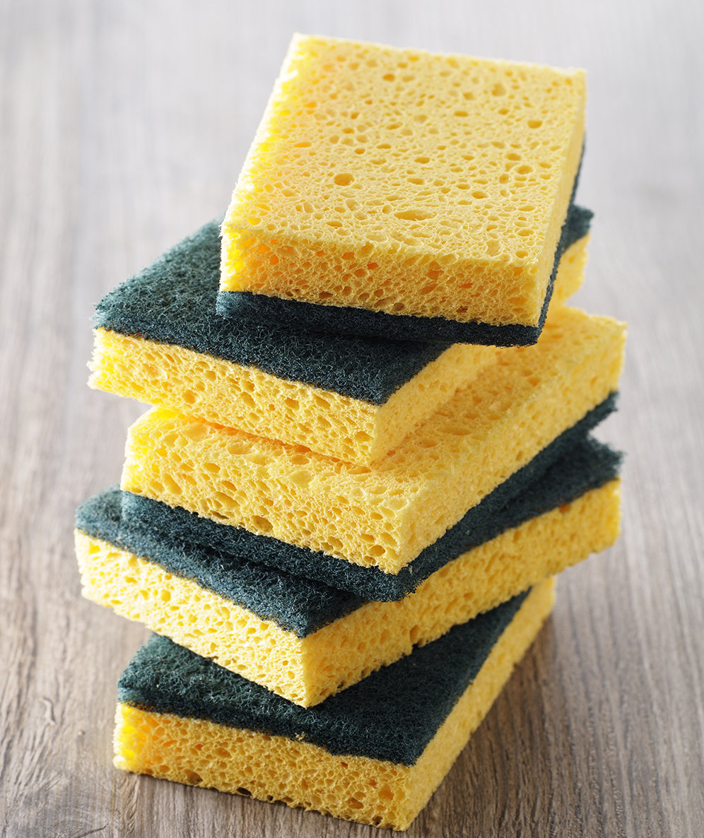 disinfect-the-sponge
