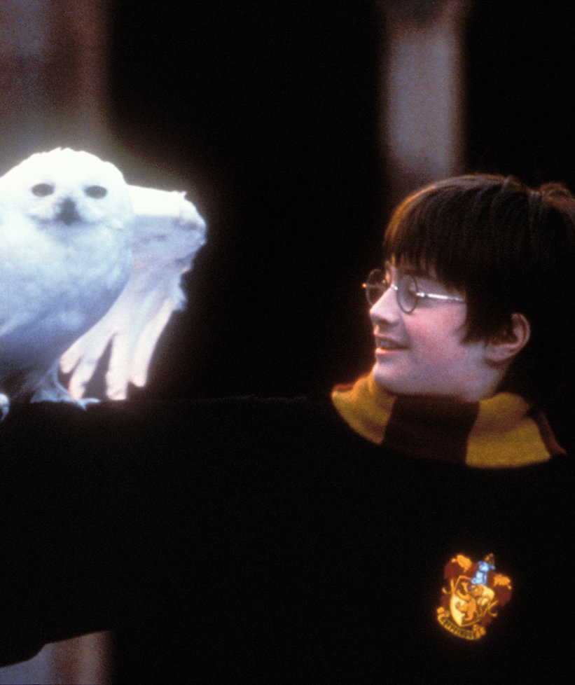 harry-potter-movie