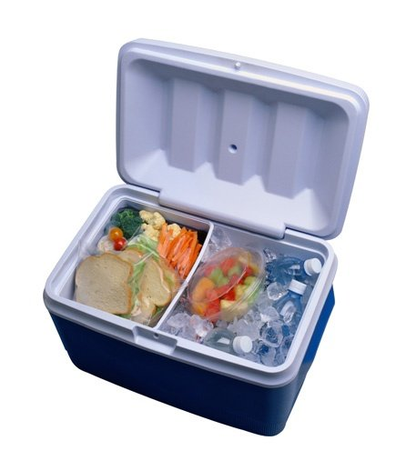 Keep Cold Food Cold Food Safety Tips For Summer Real