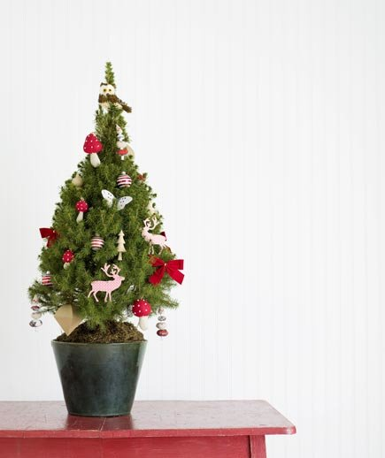 Proper Way To Decorate A Christmas Tree: How To Decorate With Pets In The Home