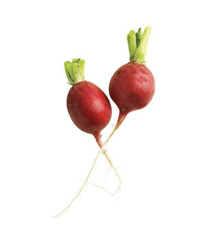 radishes - Photo By Anna Williams - Spring Produce