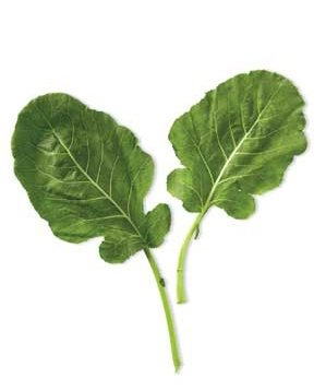0712spinach-leaf
