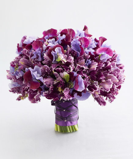 Parrot Tulips And Sweet Pea