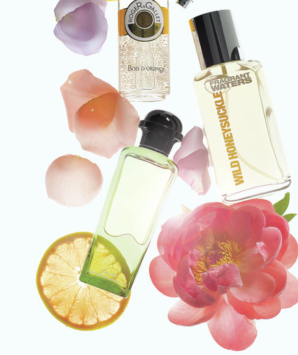 floral-fragrances