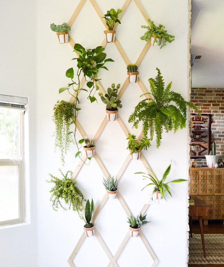 10 indoor garden ideas to cure the winter blues real simple for Indoor gardening during winter