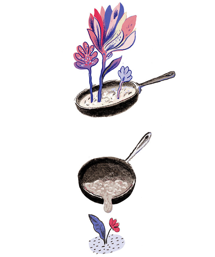 illustration-cooking-oil-plants