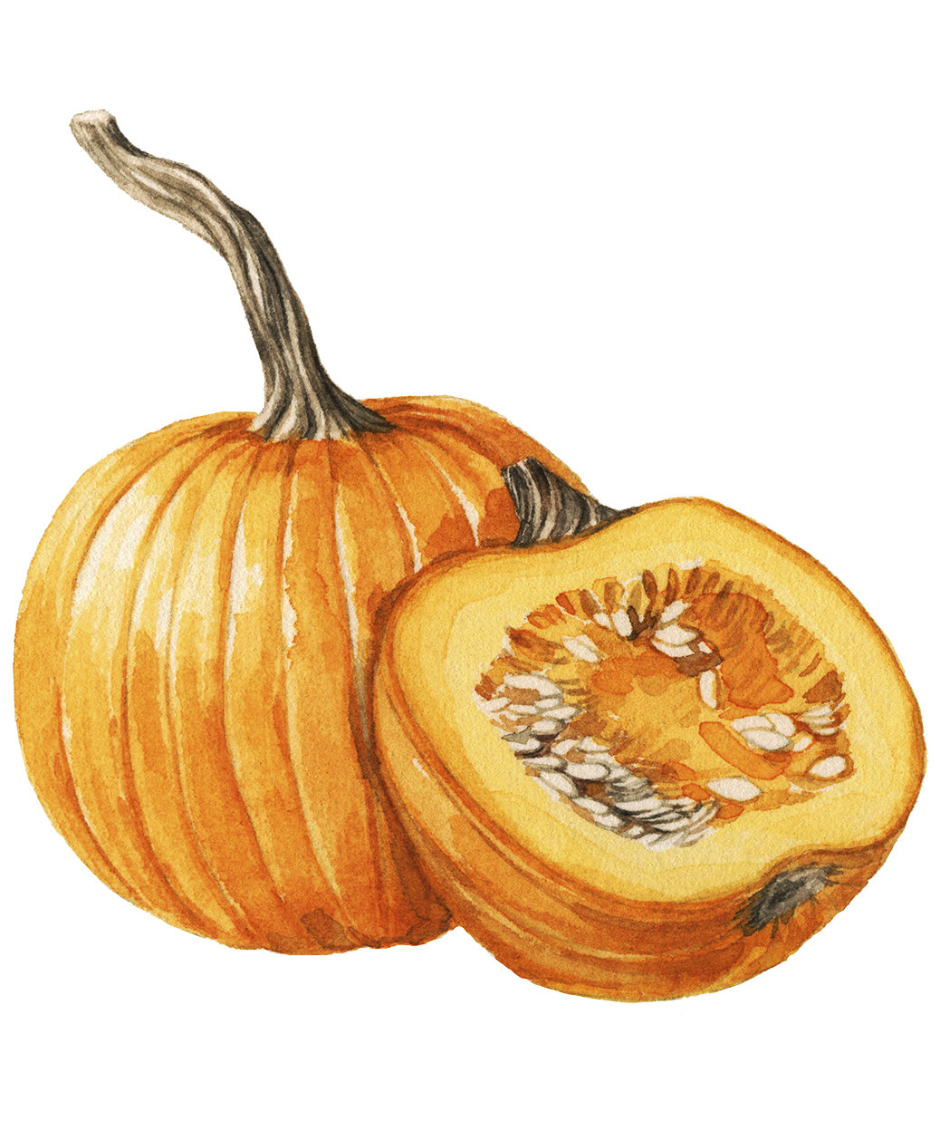 how-to-peel-squash
