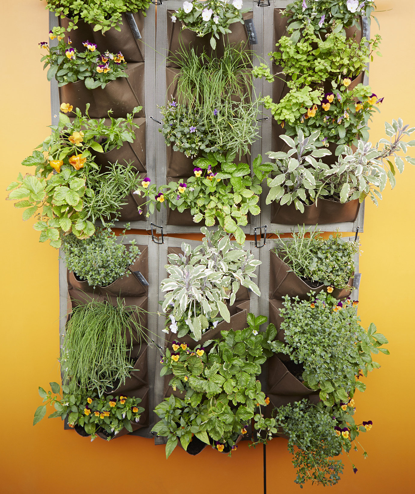 Try A Vertical Hanging Garden Small Patio Ideas Real