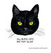 black-cats-goldwasser-arkle