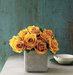 yellow-rose-cluster-short-vase