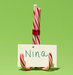 new-use-candy-cane-place-card