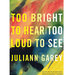 too-bright-too-loud-juliann-garey