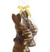 chocolate-easter-bunny