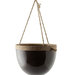 mulberry-hanging-planter