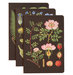 botanical-journals