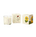 plantable-packaging-soy-floral-candle