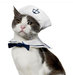 sailor-halloween-costume