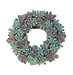 echeveria-living-wreath