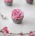 frosting-roses-cupcakes