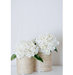 white-hydrangea-rope-wrapped-vase
